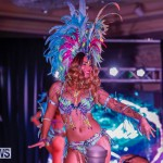 Party People Bermuda Heroes Weekend BHW The Launch, January 14 2018-8839