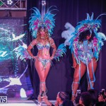 Party People Bermuda Heroes Weekend BHW The Launch, January 14 2018-8861
