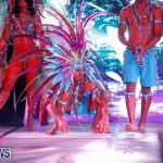 Party People Bermuda Heroes Weekend BHW The Launch, January 14 2018-8867