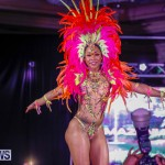 Party People Bermuda Heroes Weekend BHW The Launch, January 14 2018-8952