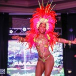 Party People Bermuda Heroes Weekend BHW The Launch, January 14 2018-8957