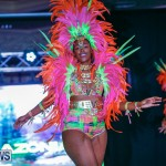 Party People Bermuda Heroes Weekend BHW The Launch, January 14 2018-8983