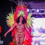 Party People Bermuda Heroes Weekend BHW The Launch, January 14 2018-9032