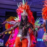 Party People Bermuda Heroes Weekend BHW The Launch, January 14 2018-9387