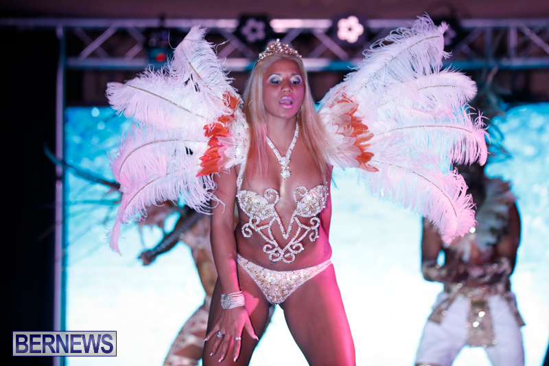 Passion-Bermuda-Heroes-Weekend-BHW-The-Launch-January-14-2018-0681