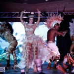 Passion Bermuda Heroes Weekend BHW The Launch, January 14 2018-0712