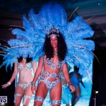 Passion Bermuda Heroes Weekend BHW The Launch, January 14 2018-0788