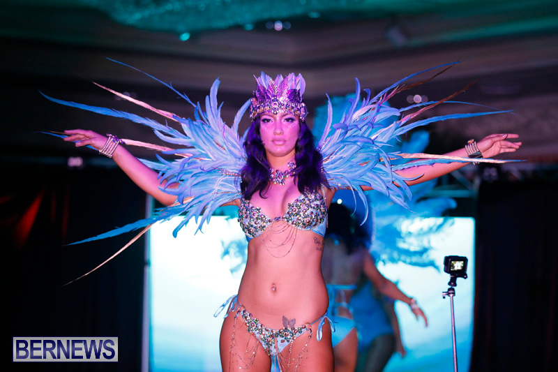 Passion-Bermuda-Heroes-Weekend-BHW-The-Launch-January-14-2018-0799