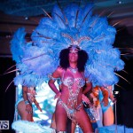 Passion Bermuda Heroes Weekend BHW The Launch, January 14 2018-0829