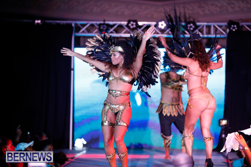 Passion-Bermuda-Heroes-Weekend-BHW-The-Launch-January-14-2018-0865