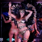 Passion Bermuda Heroes Weekend BHW The Launch, January 14 2018-0979-2