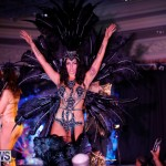Passion Bermuda Heroes Weekend BHW The Launch, January 14 2018-1008-2