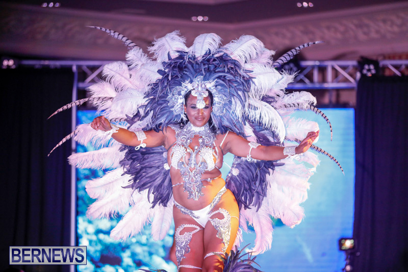 Passion-Bermuda-Heroes-Weekend-BHW-The-Launch-January-14-2018-1026-2