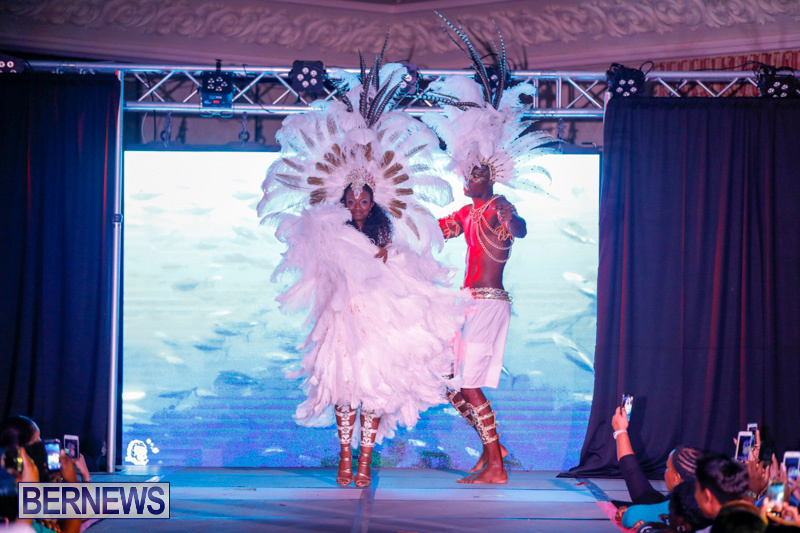 Passion-Bermuda-Heroes-Weekend-BHW-The-Launch-January-14-2018-1077-2