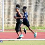 track Bermuda Jan 24 2018 (18)