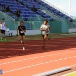 track Bermuda Jan 24 2018 (3)