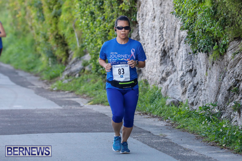 30th-Annual-PALS-Fun-Run-Walk-Bermuda-February-18-2018-9614