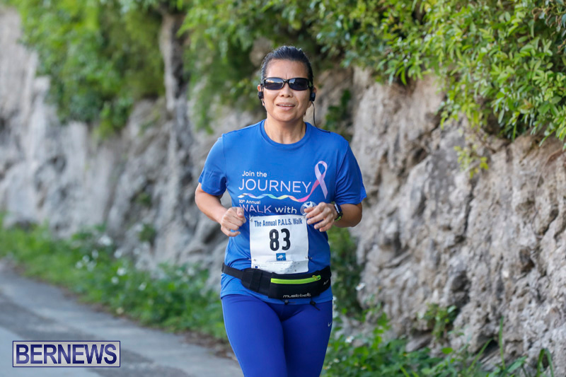 30th-Annual-PALS-Fun-Run-Walk-Bermuda-February-18-2018-9617