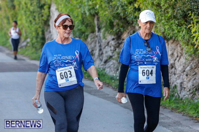 30th-Annual-PALS-Fun-Run-Walk-Bermuda-February-18-2018-9655