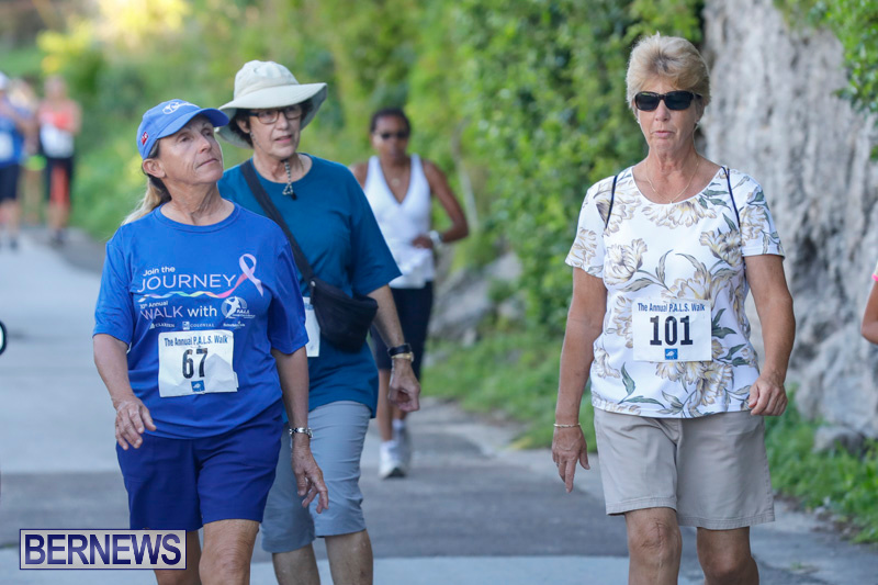30th-Annual-PALS-Fun-Run-Walk-Bermuda-February-18-2018-9665