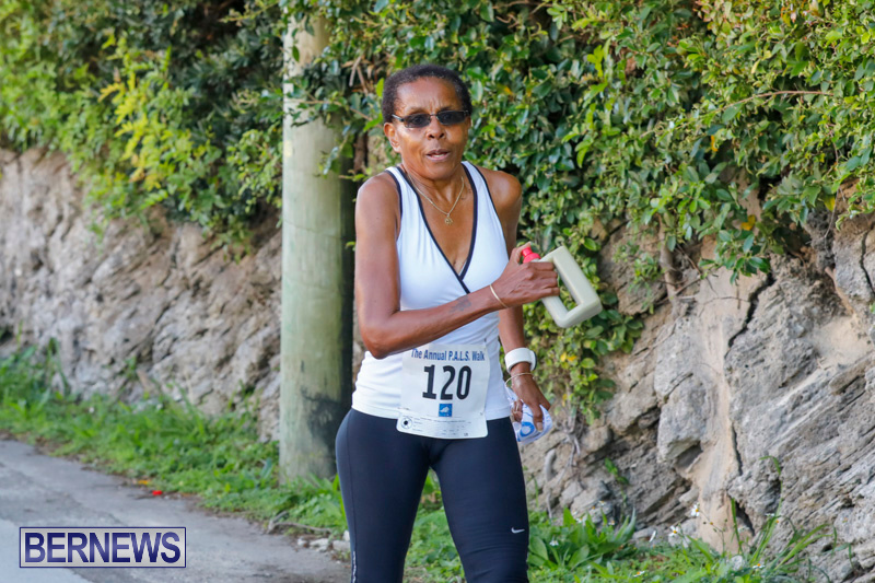 30th-Annual-PALS-Fun-Run-Walk-Bermuda-February-18-2018-9676
