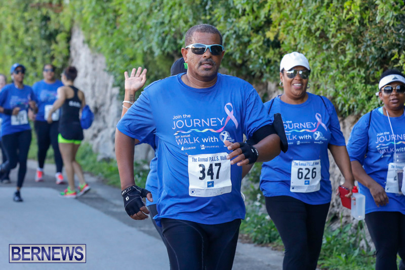 30th-Annual-PALS-Fun-Run-Walk-Bermuda-February-18-2018-9699