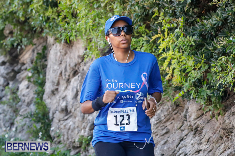 30th-Annual-PALS-Fun-Run-Walk-Bermuda-February-18-2018-9707