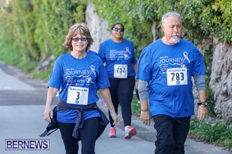 30th-Annual-PALS-Fun-Run-Walk-Bermuda-February-18-2018-9710