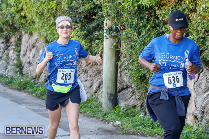 30th-Annual-PALS-Fun-Run-Walk-Bermuda-February-18-2018-9721