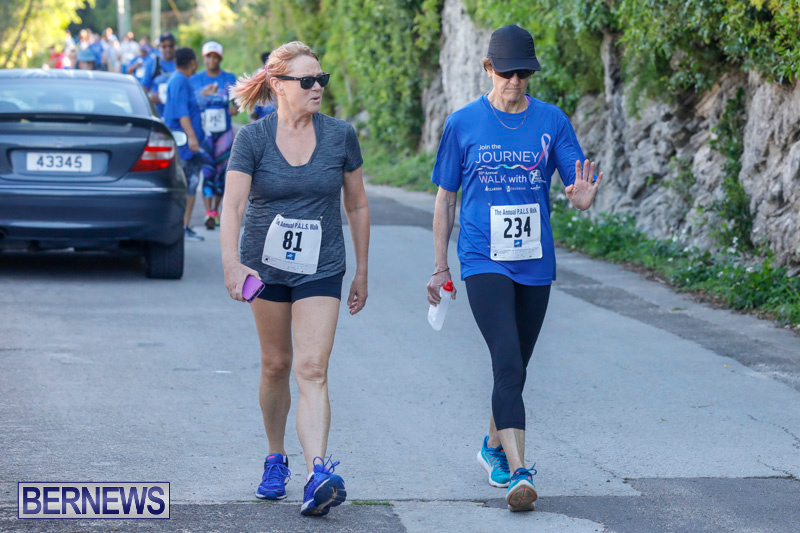 30th-Annual-PALS-Fun-Run-Walk-Bermuda-February-18-2018-9744