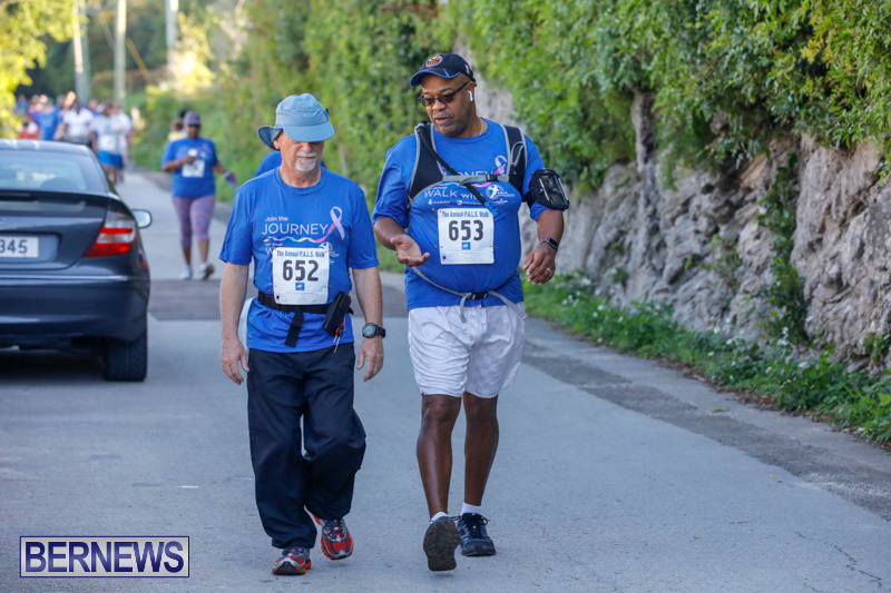 30th-Annual-PALS-Fun-Run-Walk-Bermuda-February-18-2018-9752