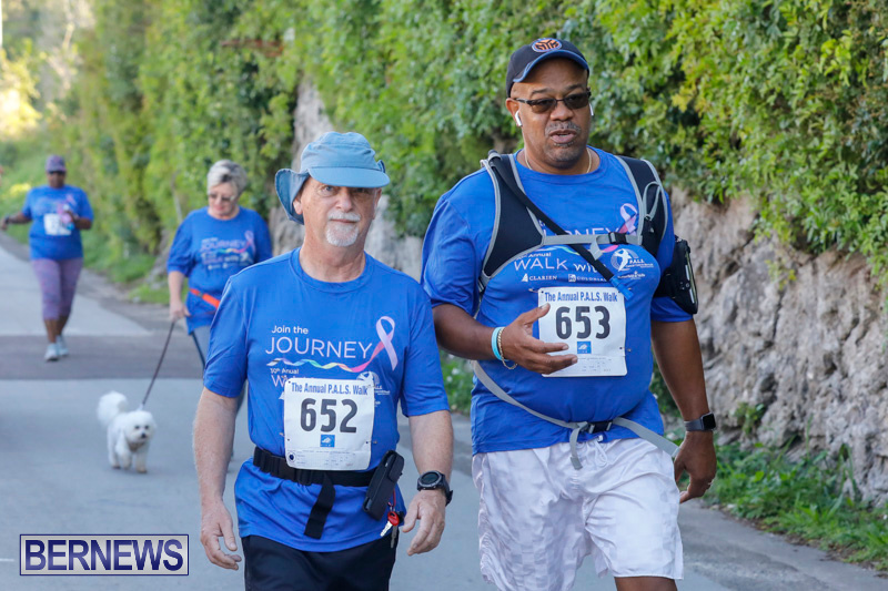 30th-Annual-PALS-Fun-Run-Walk-Bermuda-February-18-2018-9755