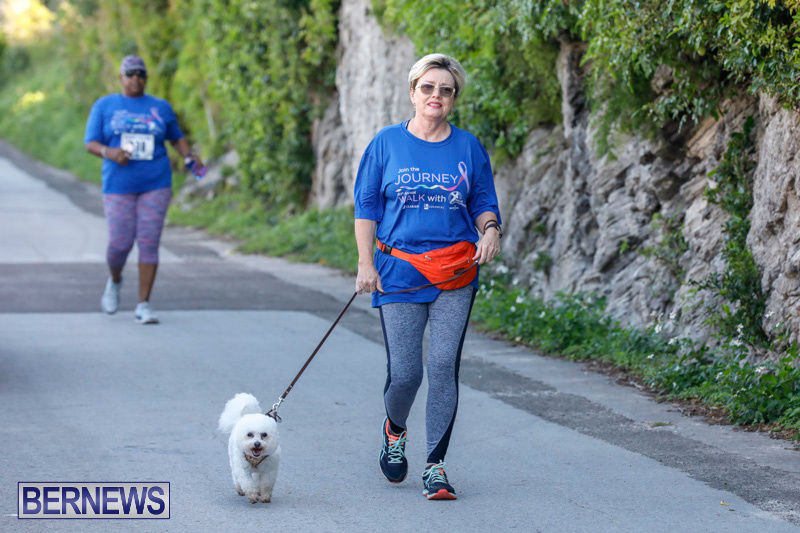 30th-Annual-PALS-Fun-Run-Walk-Bermuda-February-18-2018-9758