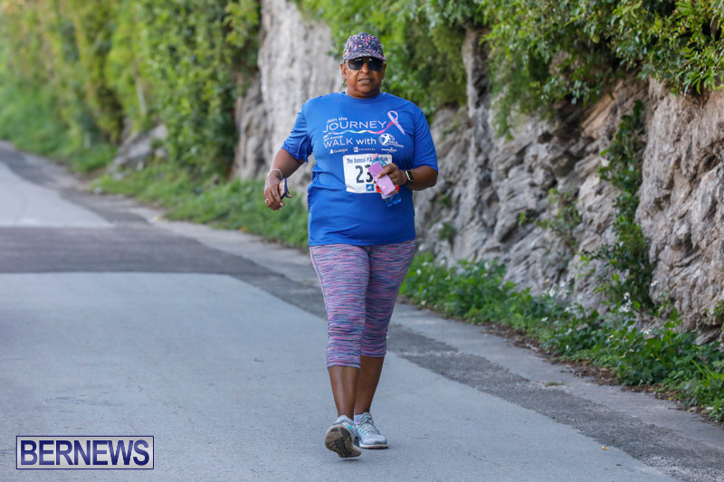 30th-Annual-PALS-Fun-Run-Walk-Bermuda-February-18-2018-9764