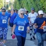 30th Annual PALS Fun Run Walk Bermuda, February 18 2018-9848