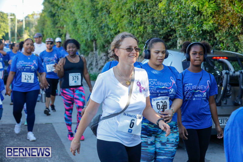 30th-Annual-PALS-Fun-Run-Walk-Bermuda-February-18-2018-9858