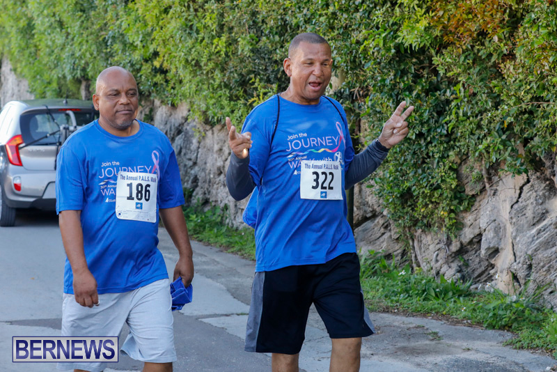 30th-Annual-PALS-Fun-Run-Walk-Bermuda-February-18-2018-9876
