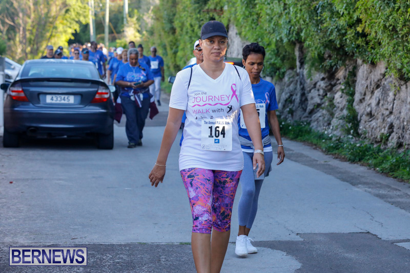 30th-Annual-PALS-Fun-Run-Walk-Bermuda-February-18-2018-9878