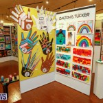 53rd Primary School Art exhibition Bermuda, February 9 2018-8507