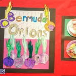 53rd Primary School Art exhibition Bermuda, February 9 2018-8570