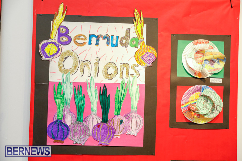 53rd-Primary-School-Art-exhibition-Bermuda-February-9-2018-8570