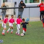 BFA Girl's Football League Bermuda, February 3 2018-7611