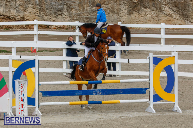 Bermuda-Equestrian-Federation-Stardust-Jumper-Series-February-3-2018-6818