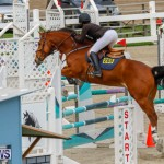 Bermuda Equestrian Federation Stardust Jumper Series, February 3 2018-6829