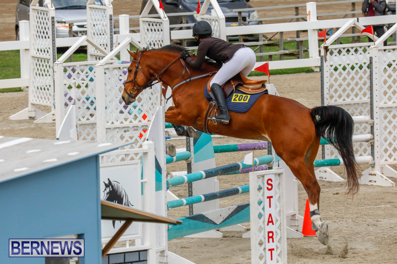Bermuda-Equestrian-Federation-Stardust-Jumper-Series-February-3-2018-6829