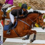 Bermuda Equestrian Federation Stardust Jumper Series, February 3 2018-6833