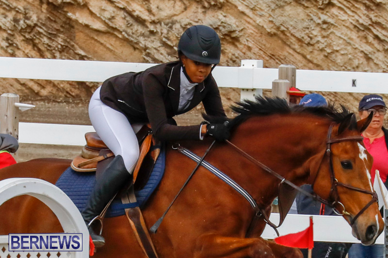 Bermuda-Equestrian-Federation-Stardust-Jumper-Series-February-3-2018-6836