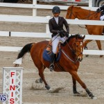 Bermuda Equestrian Federation Stardust Jumper Series, February 3 2018-6841