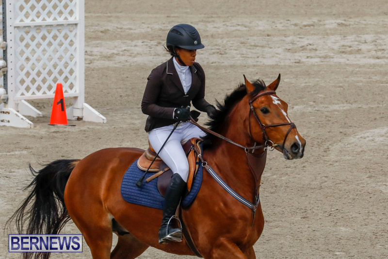 Bermuda-Equestrian-Federation-Stardust-Jumper-Series-February-3-2018-6853