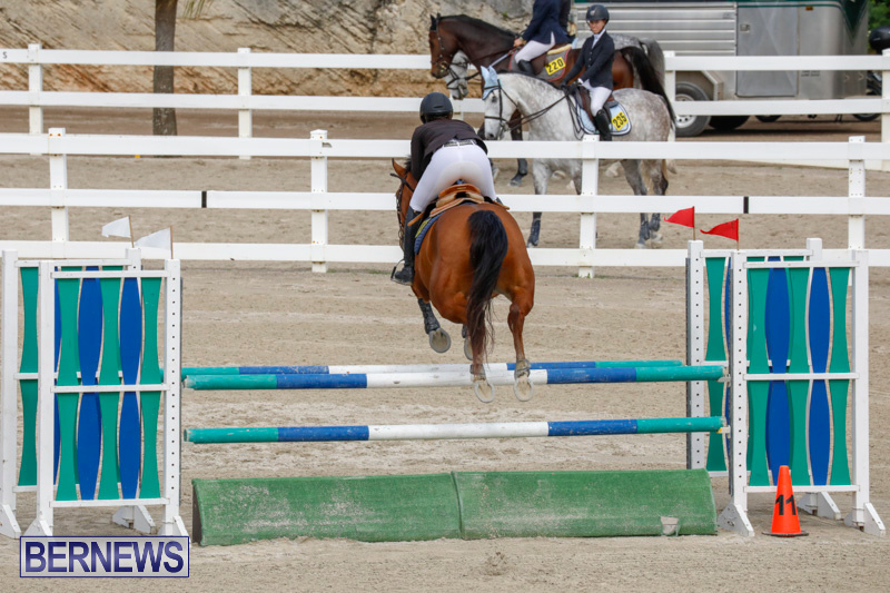 Bermuda-Equestrian-Federation-Stardust-Jumper-Series-February-3-2018-6860
